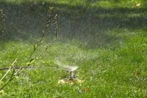 Introducing the Dramm ColorStorm Spinning Sprinkler - Dramm Lawn